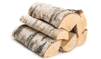 1RM Brennholz BIRKE 25cm